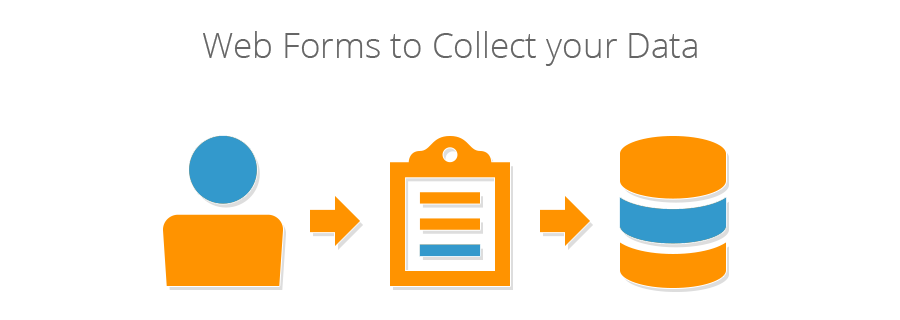 Custom Web Forms. Gather Important Data.